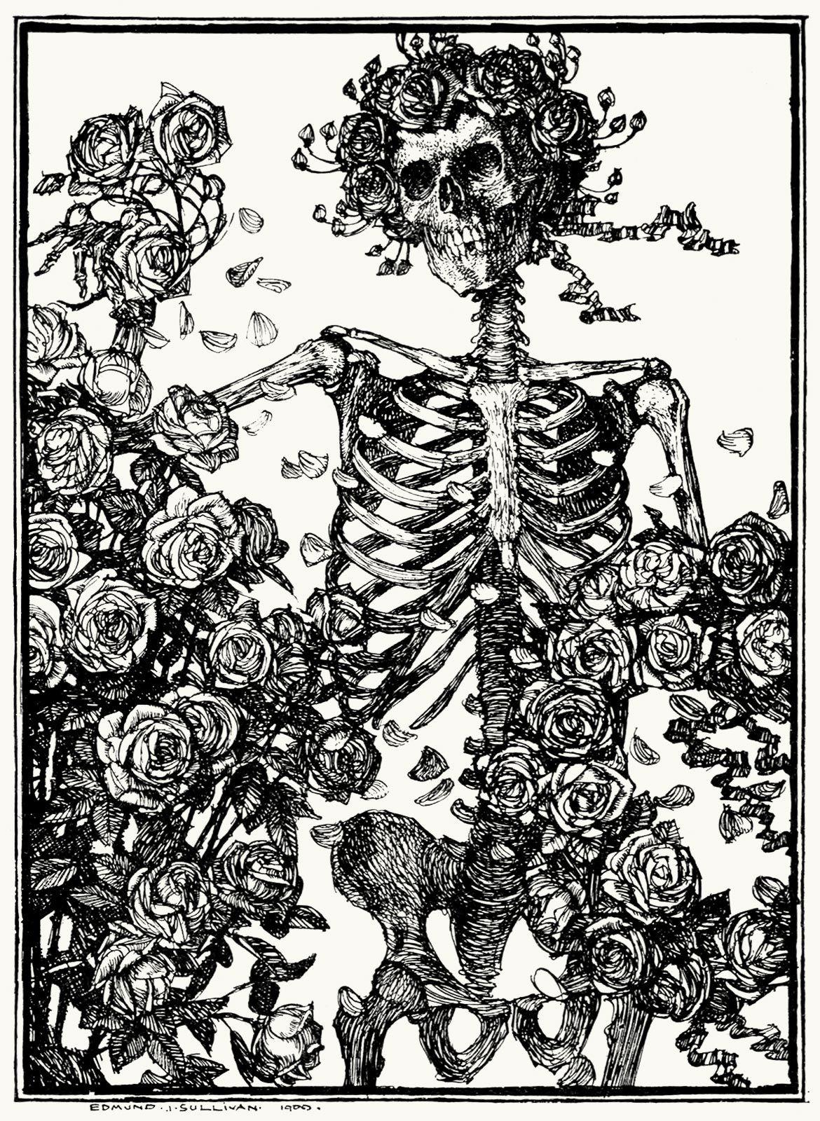 grateful dead self titledskull and bones from an illustration by edmund joseph sullivan for an old edition of the rubaiyat of omar khayyam - Grateful Dead Coloring Book