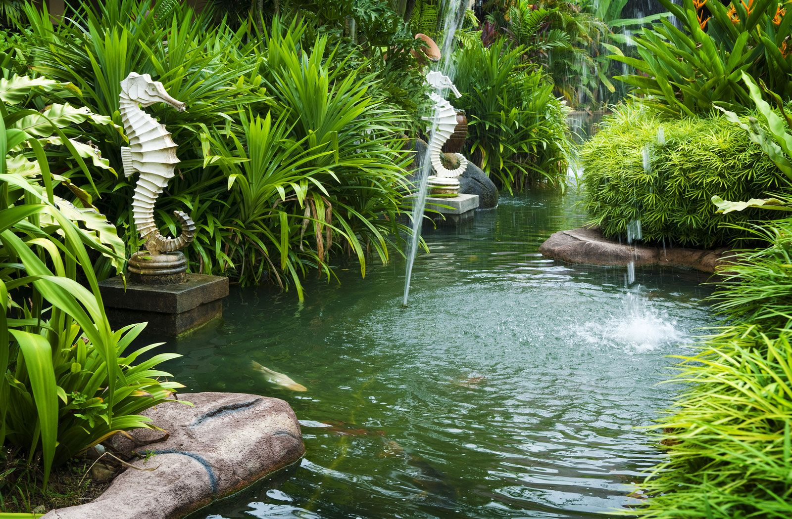 Lovely Picture Of Tropical Zen Garden View With Fountain And Green Plants. Stock  Photo, Images And Stock Photography.