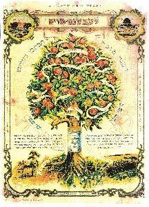 Old Jewish Shana Tova card. Hebrew