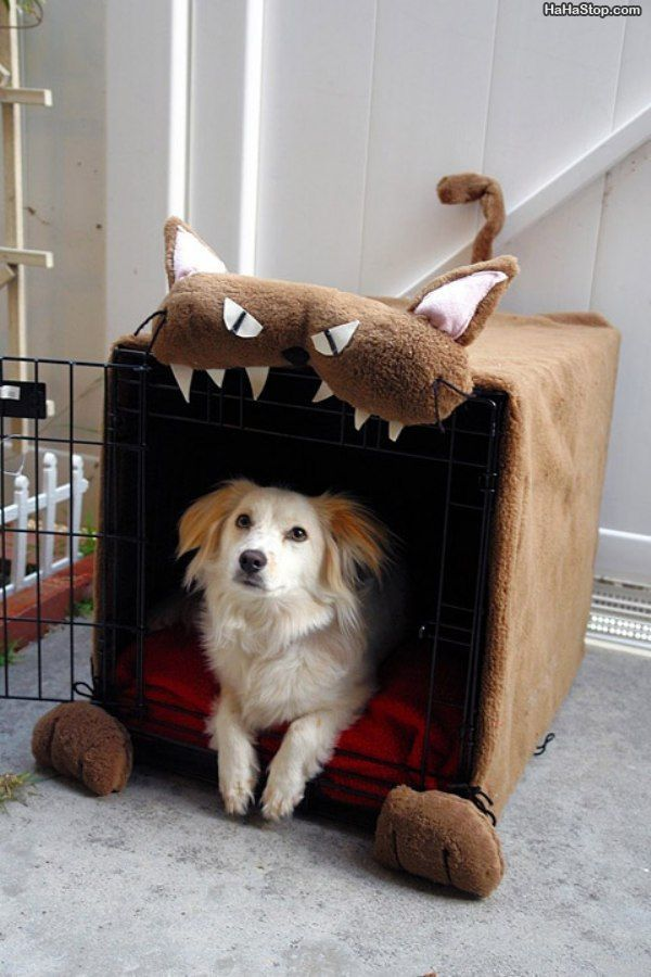 Lol...cute idea for a diy dog house.