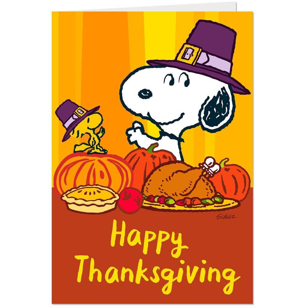 Peanuts Snoopy And Woodstock Thanksgiving Cards Pack Of 10 In 2020 Thanksgiving Snoopy Thanksgiving Cartoon Snoopy And Woodstock
