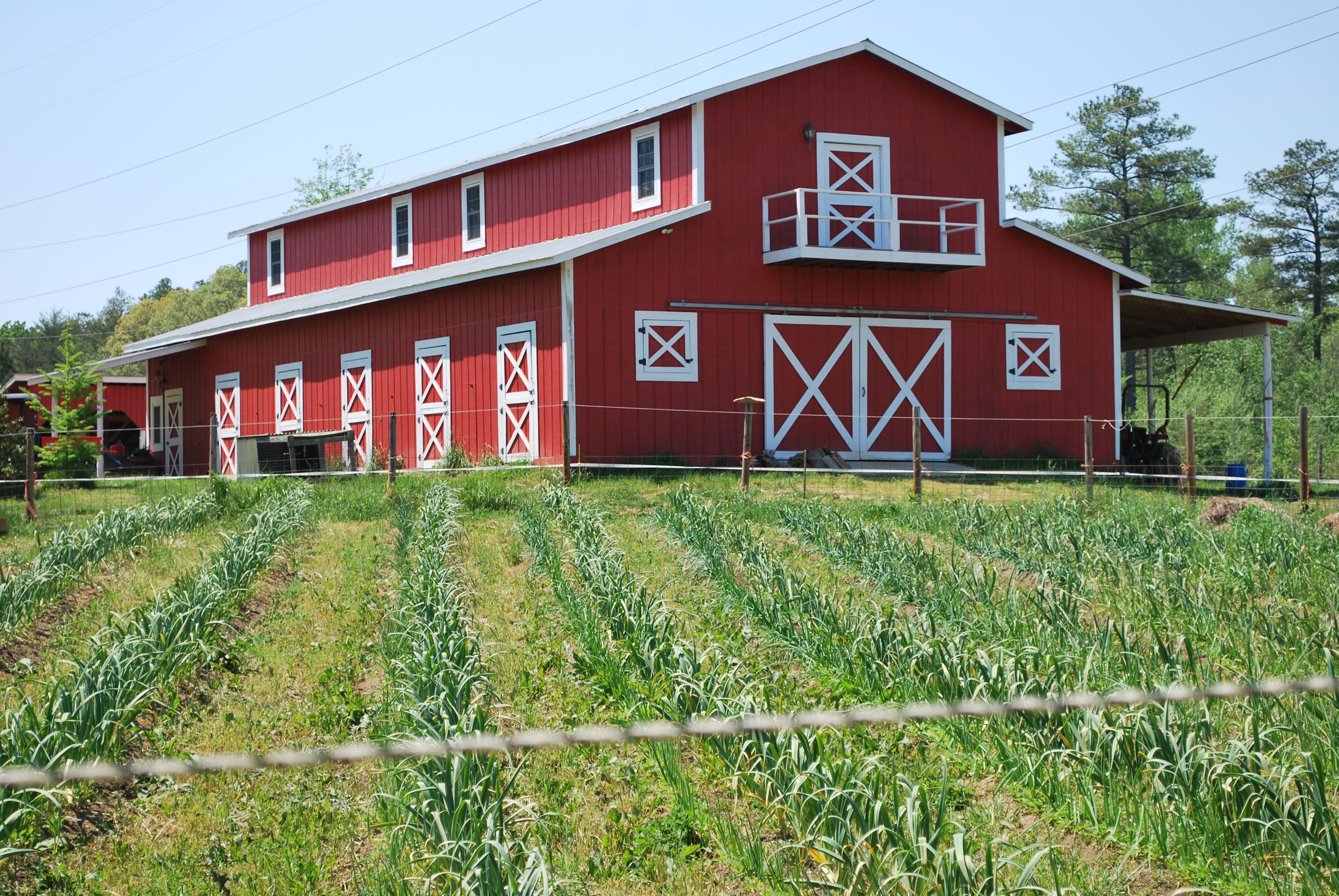 fickle creek farm s beautiful red barn and fields grow organic