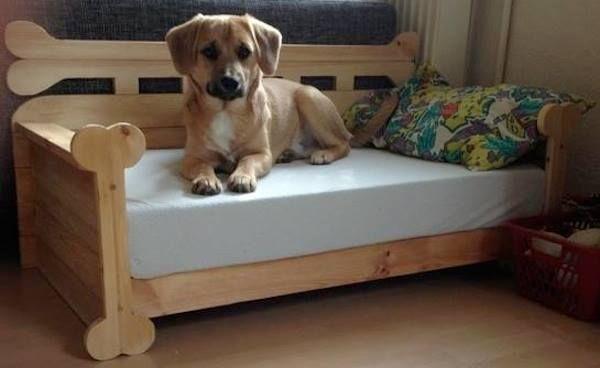 pin von bosch home garden auf pets hunde hund sofa und hunde bett. Black Bedroom Furniture Sets. Home Design Ideas