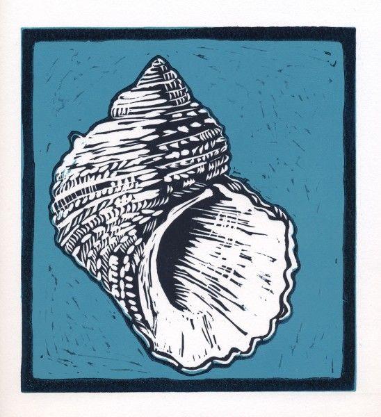 Shell Lino Cut By Kate Watkins Www.katewatkins.co.uk