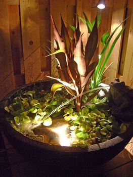 Lighted Aquatic Patio Pond Kit By Aquascape Inc., Dramatic At Night! Www.