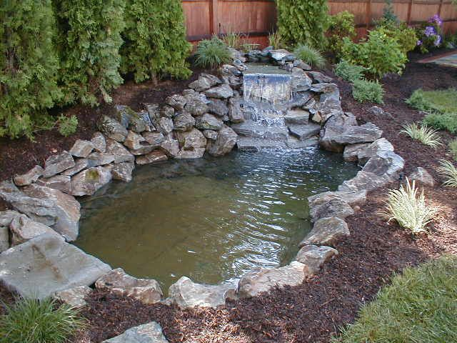 Waterfall design ponds and poolscapes long island ny for Outside fish pond ideas