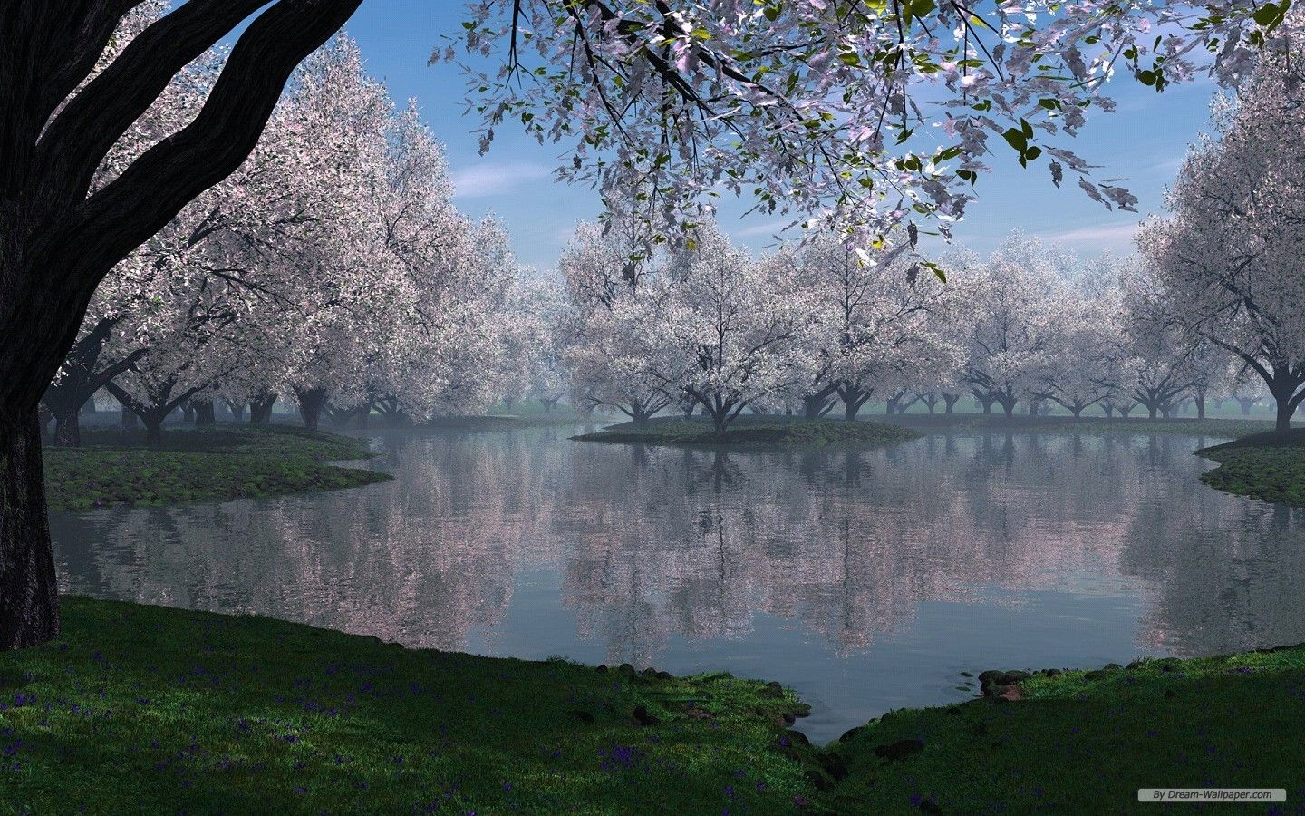 Landscape Desktop Backgrounds Wallpaper 3d Landscape Desktop 2 Wallpaper 1440x900 Spring Desktop Wallpaper Cherry Blossom Wallpaper Spring Wallpaper