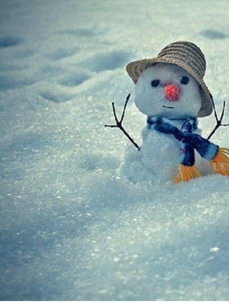 Halte durch, es hat in der Nacht wieder geschneit.