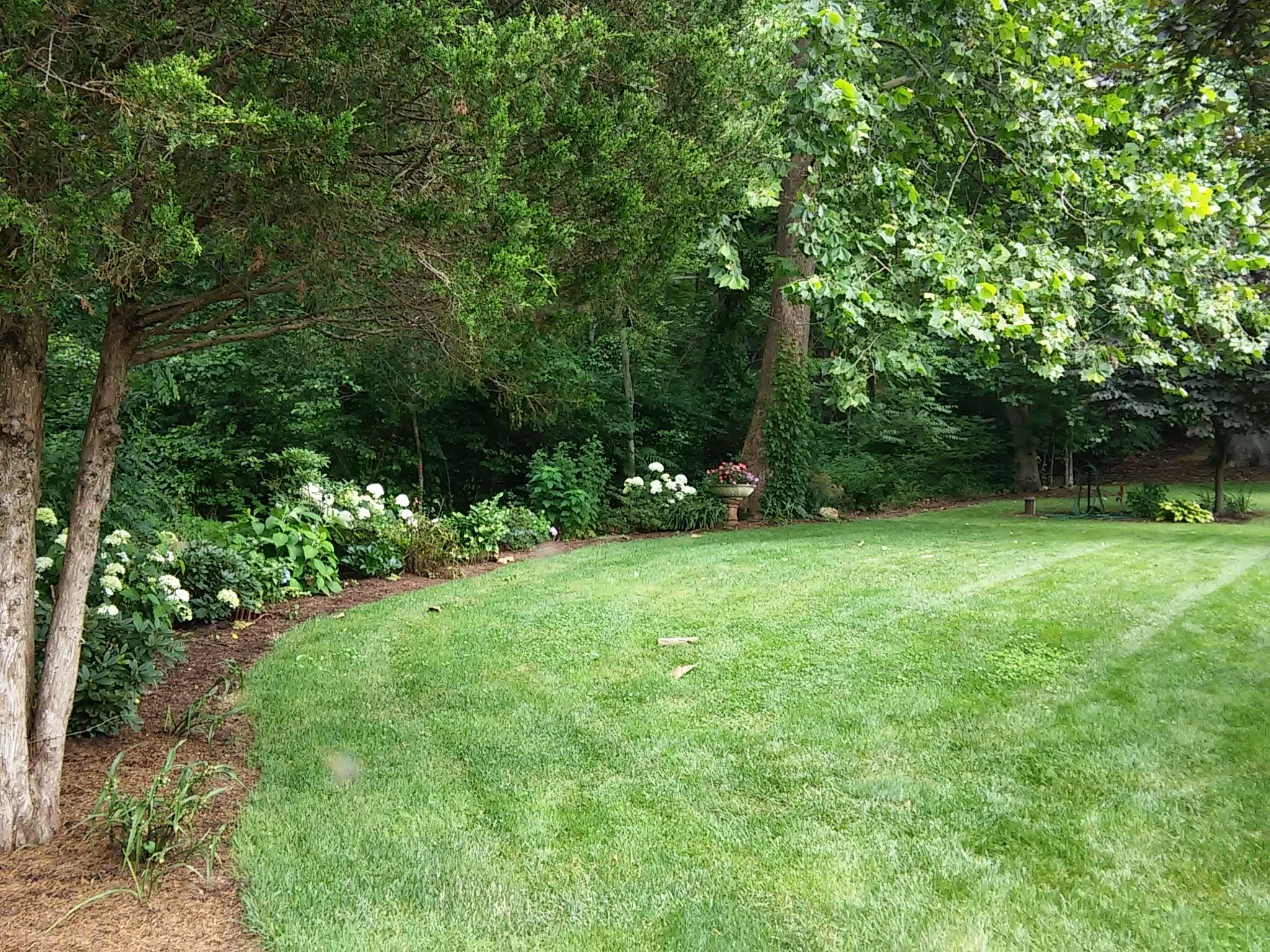 Sweeping side yard at Heartflame Garden.