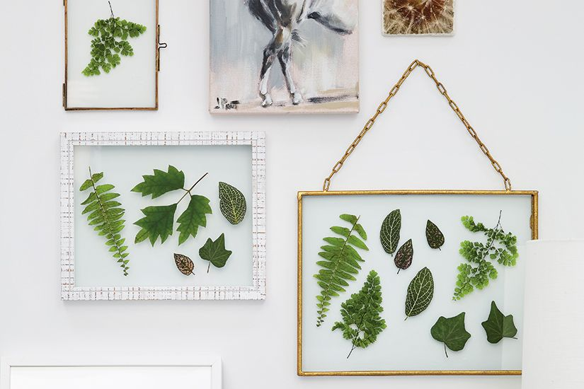 Can T Wait For The Lushness Of Spring To Take Hold Give Your Home Sneak Peek Of The Season With A Diy Pressed Le Leaf Art Diy Diy Wall Art Decor Flower Crafts