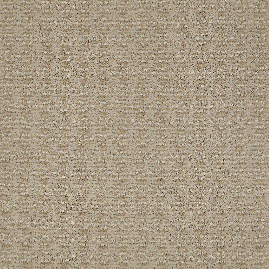 Best Shaw Charmuese Carpet Panama For Kids Bedrooms Stair 640 x 480