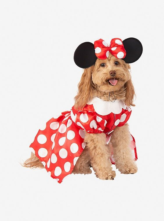 Disney Minnie Mouse Dog Costume Dog Halloween Costumes Pet