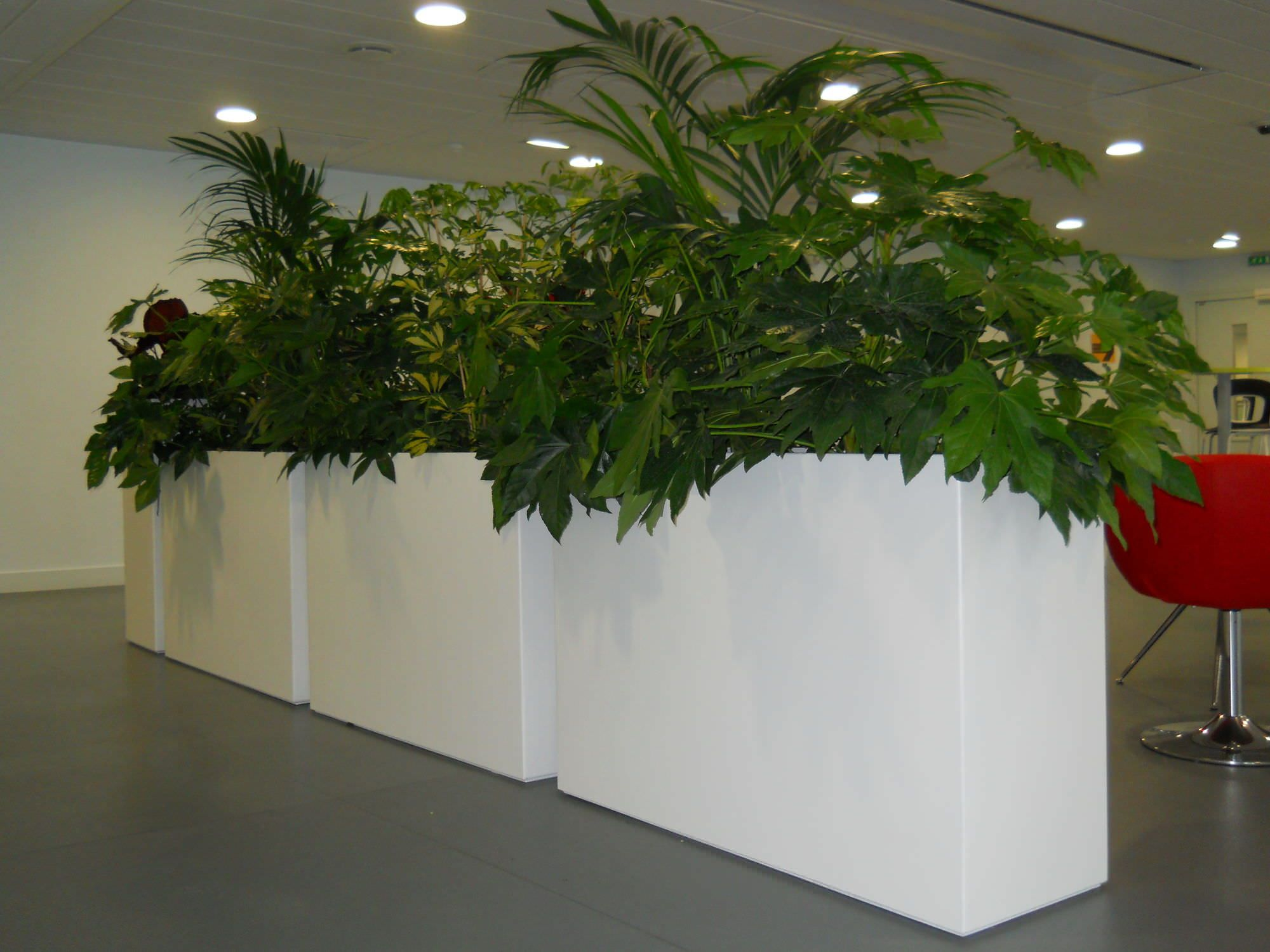 Contemporary Planter Composite Rectangular For Public Buildings Ich40h80 Ich40h100 Et Irm120 House Plant Pots Indoor Plant Pots Contemporary Planters