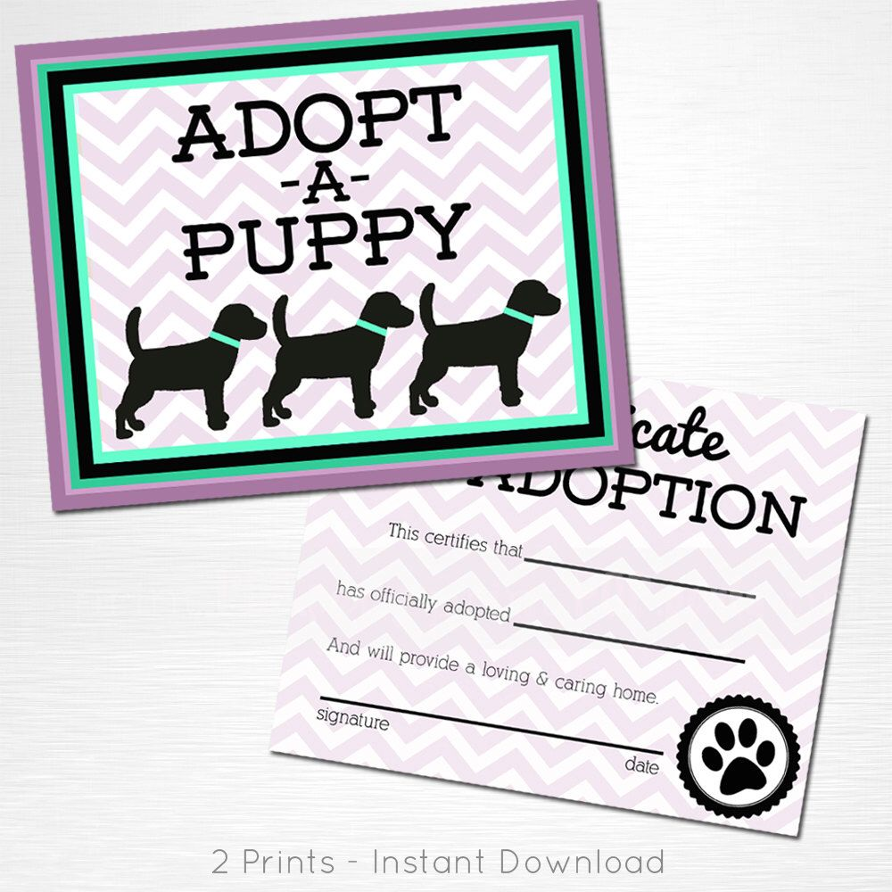 Adopt A Puppy And Certificate Of Adoption Mint Purple Black Lab Dog