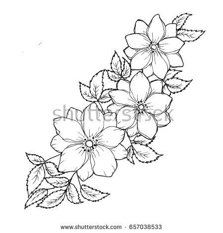 Floral background with flowers and leaves. Black and white