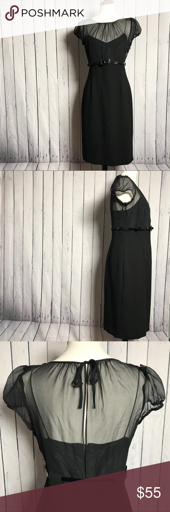 Nwt Calvin Klein Sheer Top Dress Sheer Top Dress Sheer Top Calvin Klein [ 1740 x 580 Pixel ]