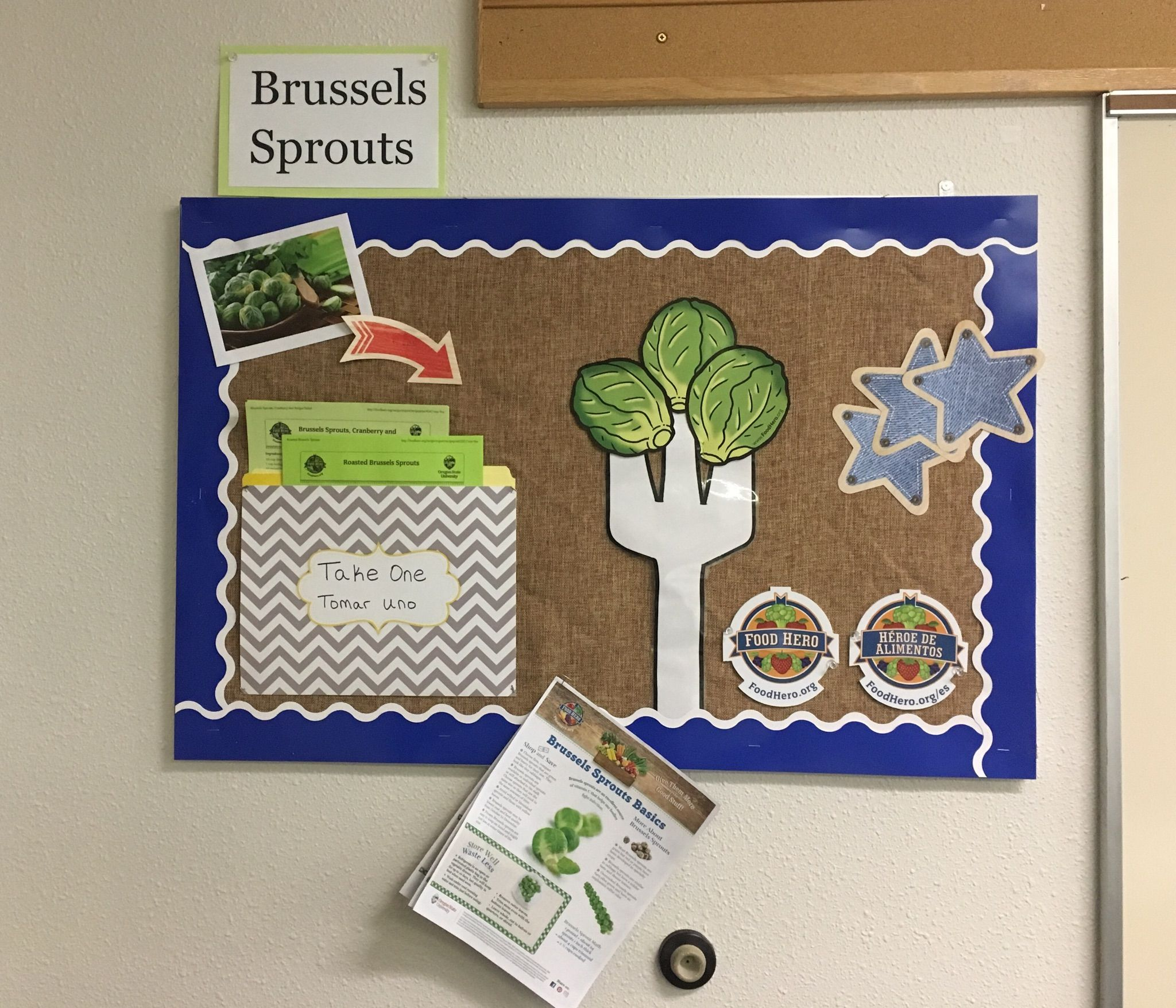Small Bulletin Board With Brussels Sprouts Brusselssprouts