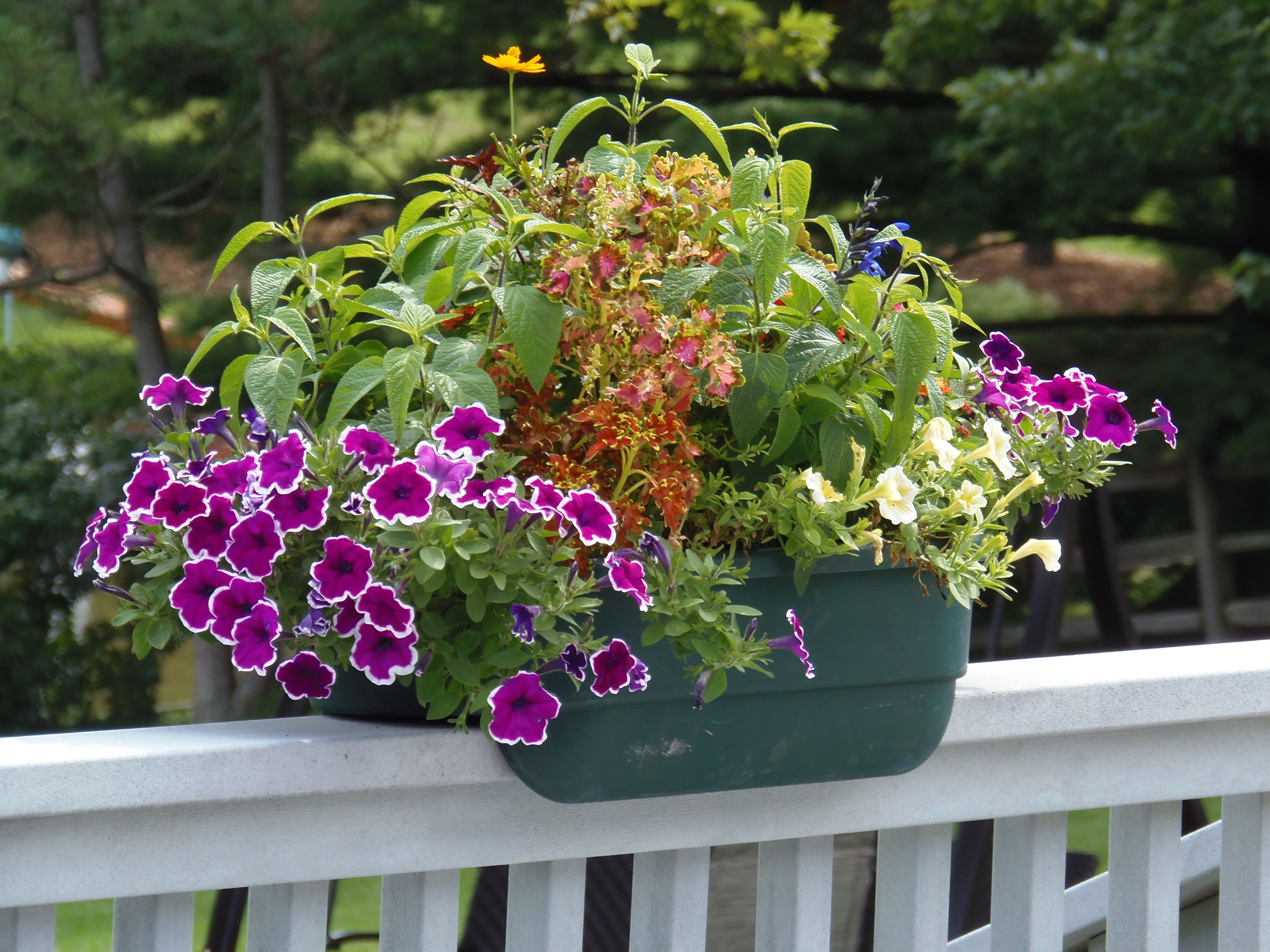 Lawn U0026 Garden Stylish Deck Railing Planter Self Watering System Plastic  Material Durable Resin Construction Flower And Vegetable Box Large Planters  Deck ...