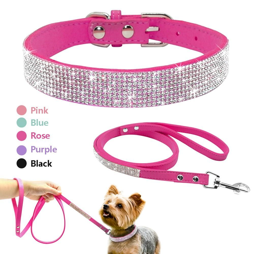 cute puppy collars and leashes
