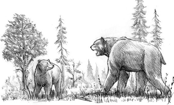 Grizzly vs Short Faced Bear
