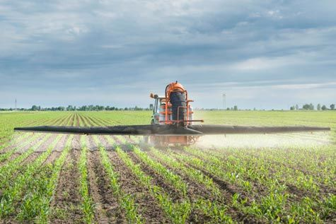 """""""Extreme"""" Levels of Roundup Detected in Food"""