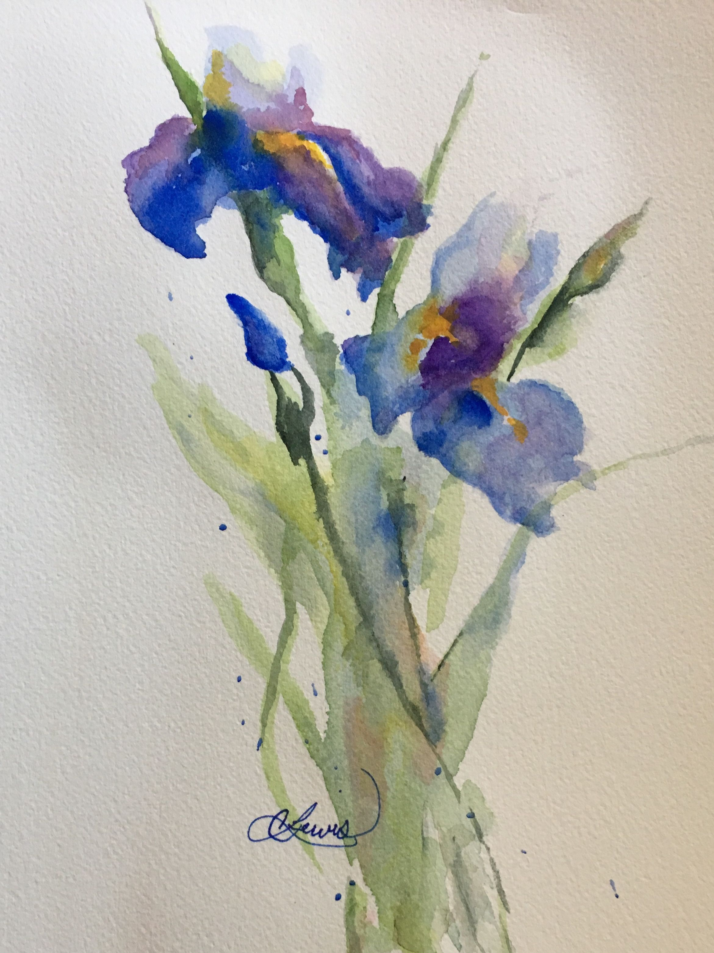Pin By Cheryl Lewis On Watercolor Painting Iris Painting Flower