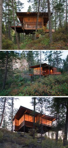 18 Modern Houses In The Forest | This forest house is lifted right up into the trees to provide better views of the surrounding vegetation.