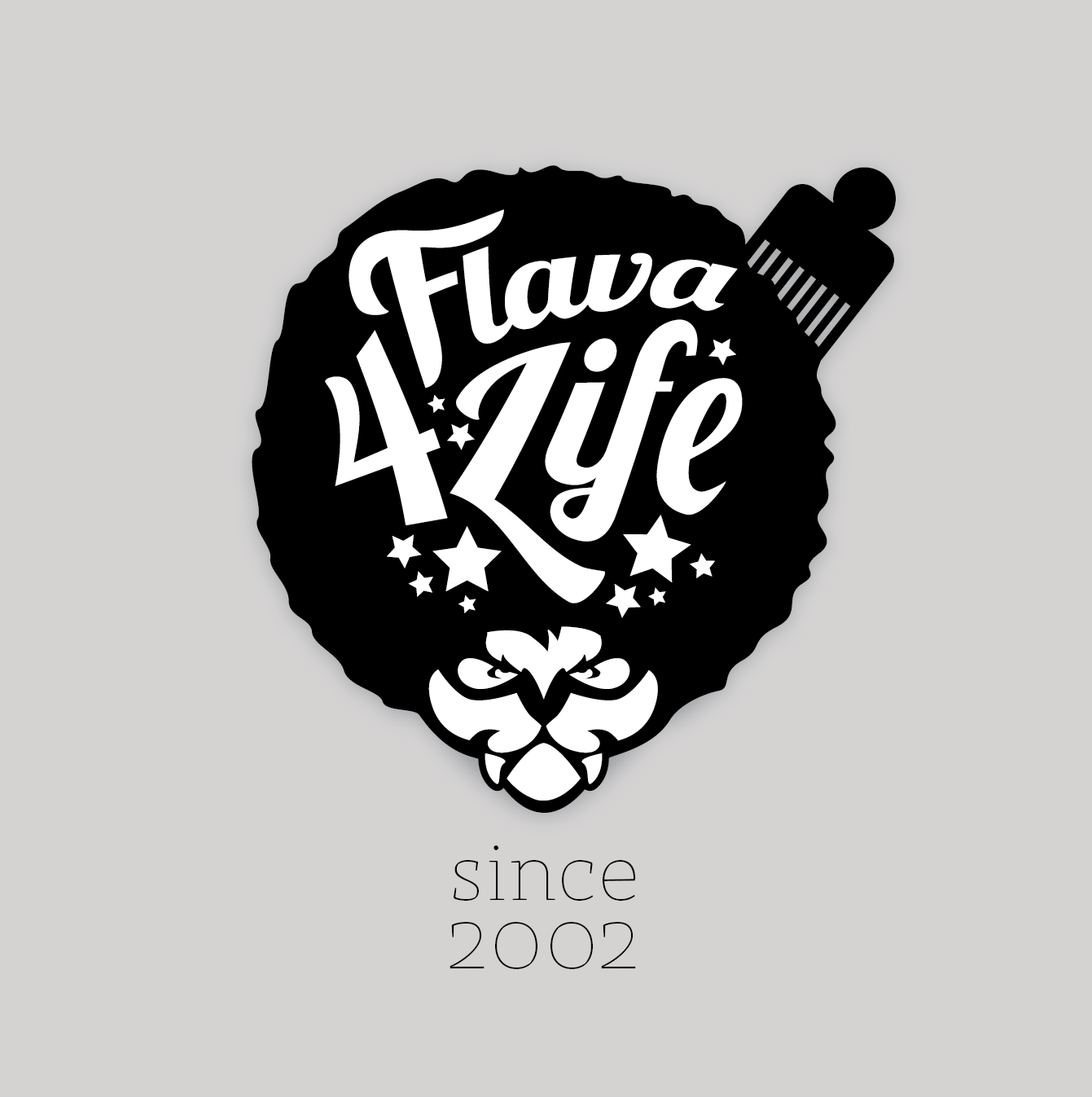 """Logo for """"Flava for Life"""" HipHop Party Season"""
