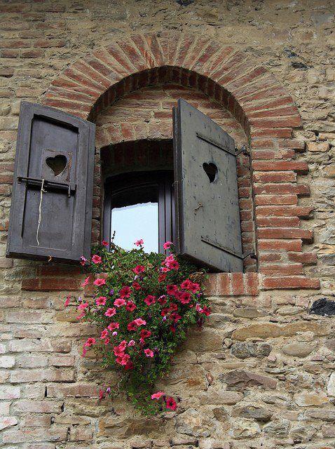 janela com flores