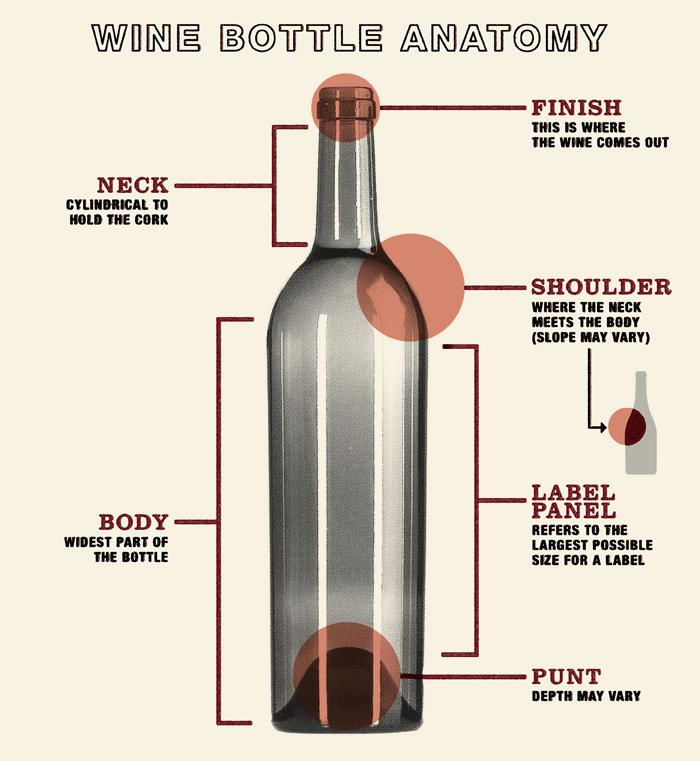 Wine Bottle Anatomy Wine Wine Bottle Wine Packaging