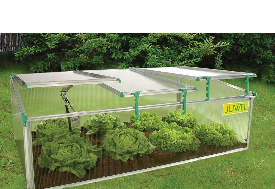 https://bettergreenhouses.com/product/bio-star-1500-premium-cold-frame-greenhouse/