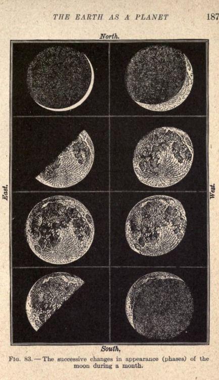 Abb. 83. Die Mondphasen. Laborunterricht in der allgemeinen Wissenschaft.1917. #astrologyaesthetic