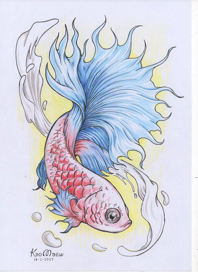 ปลาก ด Siamese Fighting Fish ปลาก ด ภาพศ ลป ภาพวาด