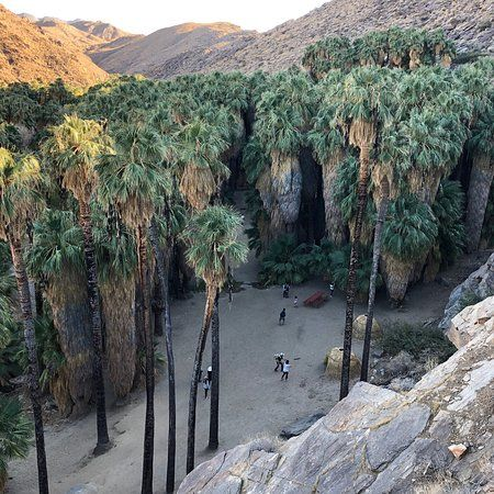 Agua Caliente Indian Canyons (Palm Springs) - 2021