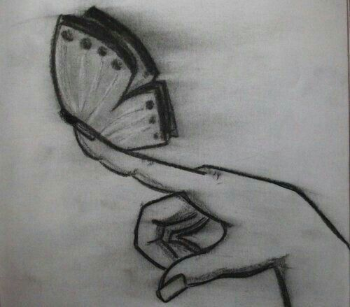 Explore easy butterfly drawing and more