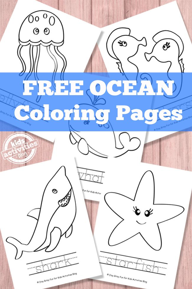 Ocean Coloring Pages {Free Printable} | Páginas para colorear, El ...