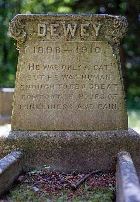 """ ""He was only a cat."" But he was human enough to be a great comfort in hours of loneliness and pain."" The tomb of DEWEY 1898-1910."