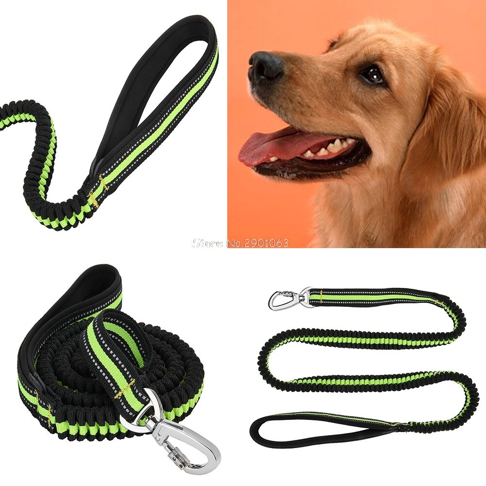 Pet Dog Leash Retractable Leash Elastic Stretch Dog Training With