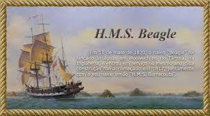 Beagle Voyage All Aboard The Hms Beagle Follow Charles Darwin S