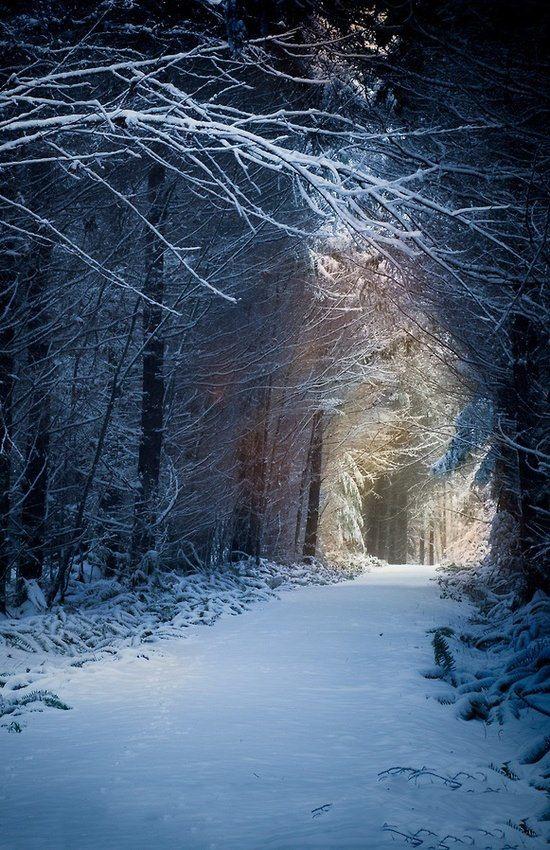 Pin by Karen Brown on Wintertide   Winter scenes, Scenery ...