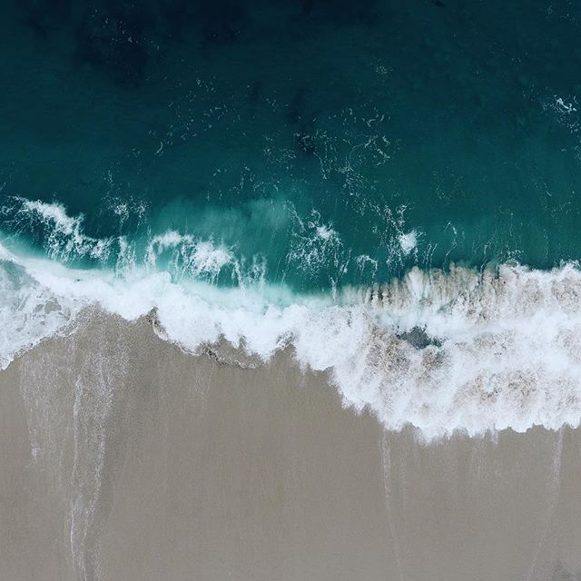 Oceans Pulse.
