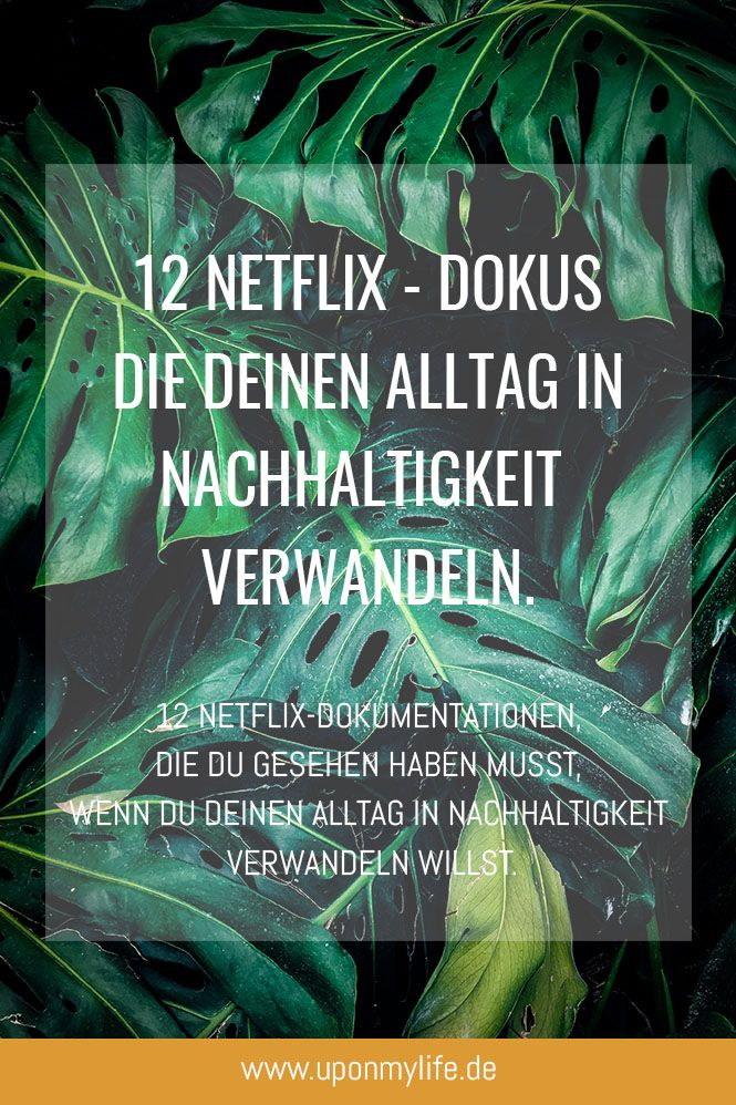 Dokumentation Netflix