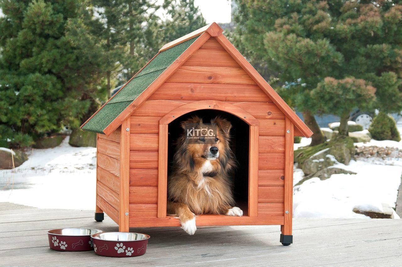 Animali Da Esterno cuccia in legno per cani. da esterno (con immagini