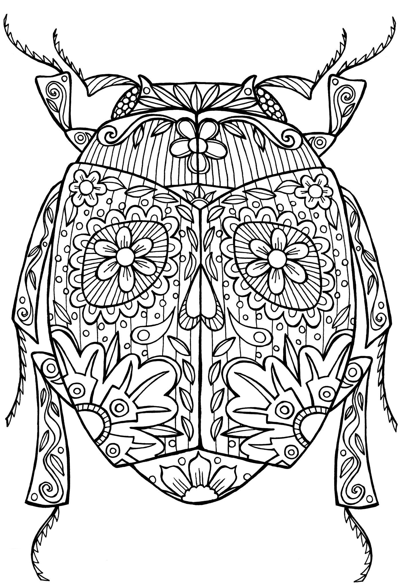 Beetle Bug Abstract Doodle Zentangle Coloring pages colouring adult ...