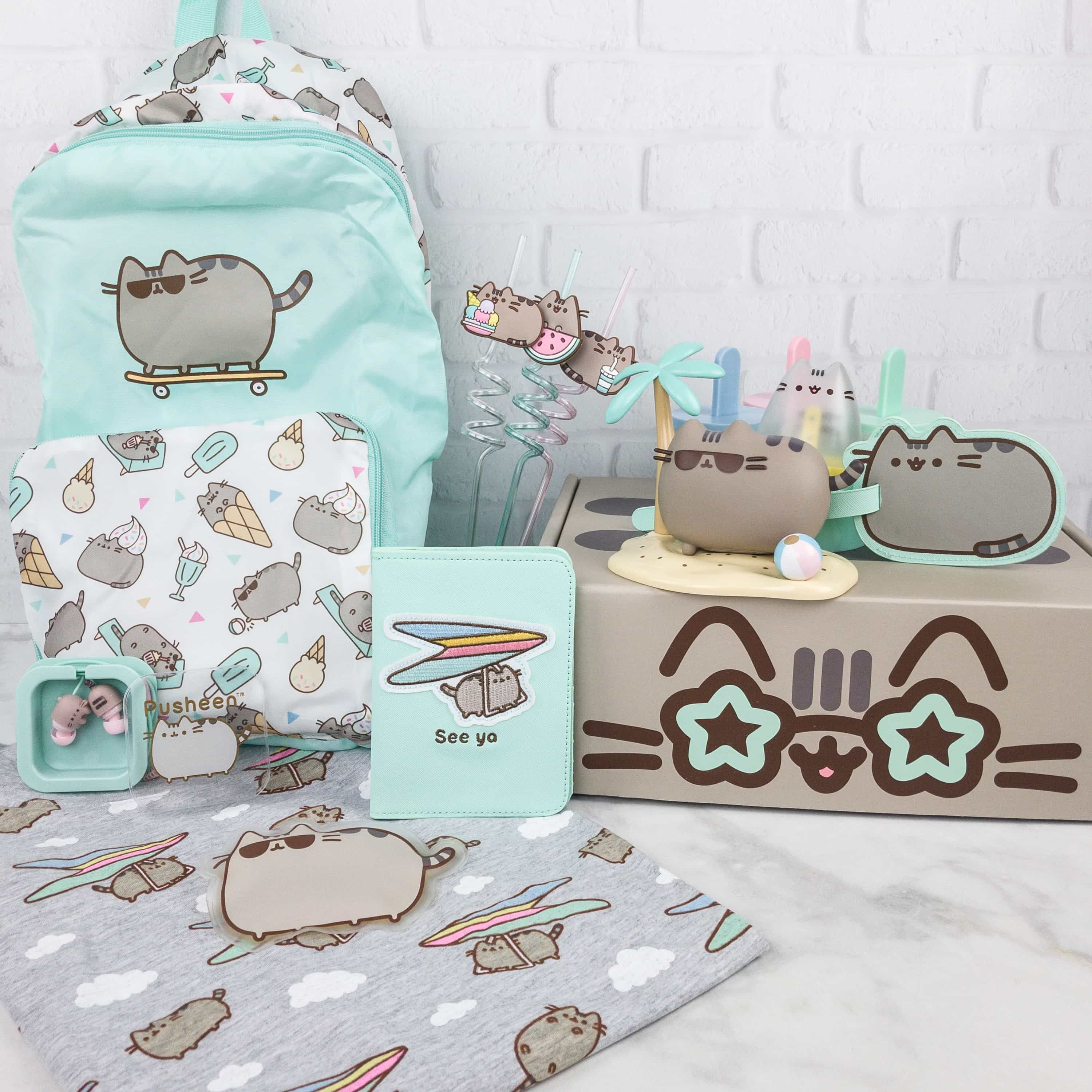 NEW Pusheen Box Subscription Complete SURFER SUMMER 2018 Box Cat Lover Gift Set