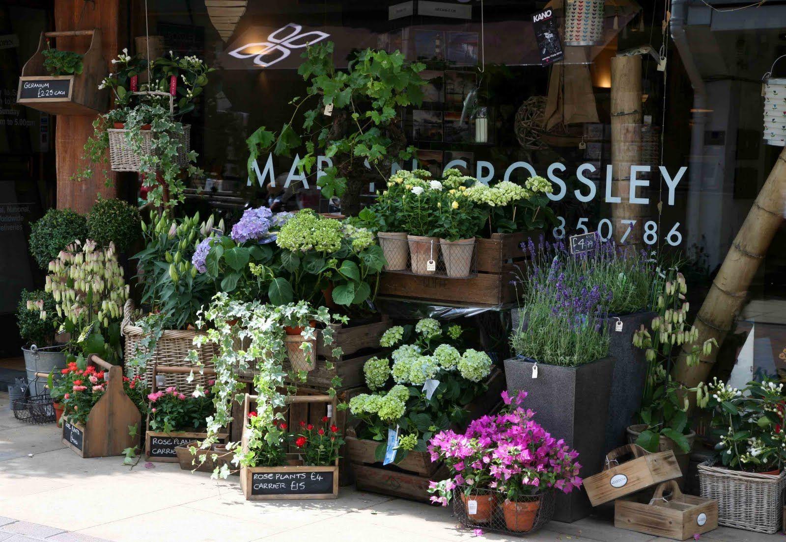 The vale of aigburth gardens pinterest flower shops flower martyn crossley the florist windsor via sally page izmirmasajfo Gallery