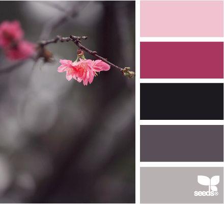 Design Seeds color palette for Gothic Cottage ❤Dream Cottage - wandgestaltung gothic