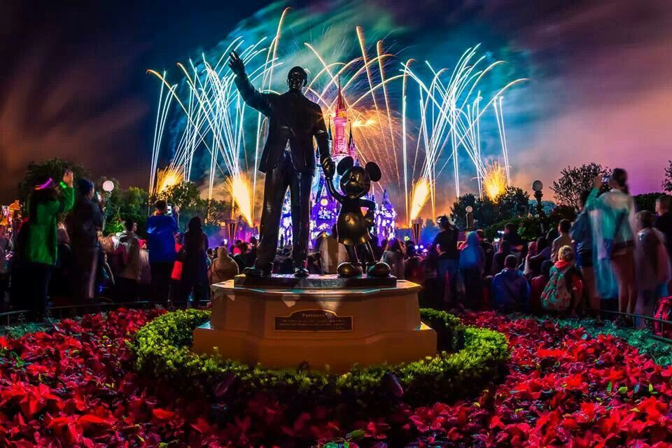 Happy New Year from Walt Disney World!!! Disney day