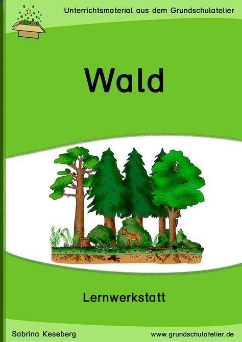 Wald Werkstatt Sachunterricht Pinterest Grundschule Wald
