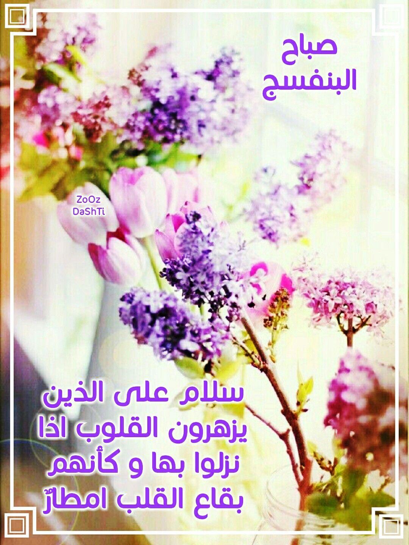 صباح البنفسج Beautiful Rose Flowers Morning Texts Morning Wish
